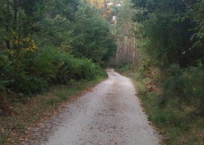Etapa 7 camino de santiago 16