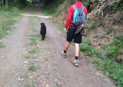 Etapa 9 Camino de Santiago 05