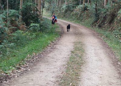 etapa 3 camino de santiago 06