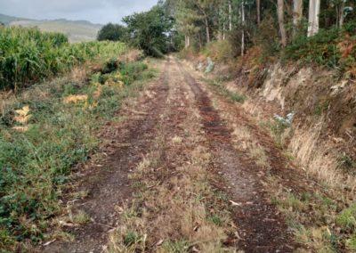 etapa 3 camino de santiago 08