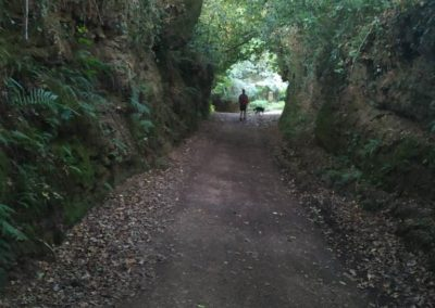 etapa 5 camino de santiago 05