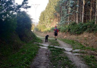 etapa 5 camino de santiago 07