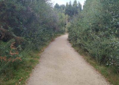 Etapa 11 Camino de Santiago 04